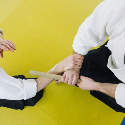 two-men-practicing-aikido-3629181